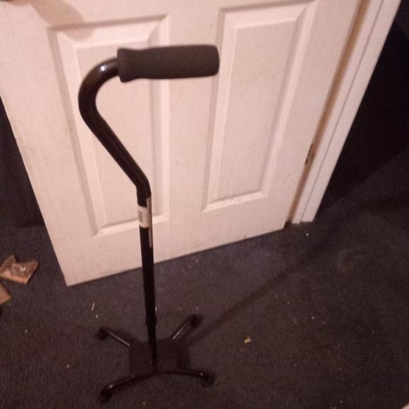 Cane, crutches, and tub rail